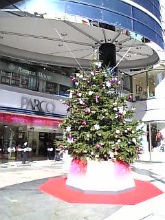 今年もクリスマスが・・・☆
